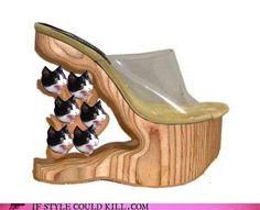http://boulderandthebeautiful.com/wp-content/uploads/2011/06/cat-heels.jpg
