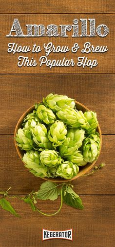 How to Grow & Brew Amarillo Hops