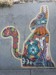 Juan B. Justo street. Street animal.