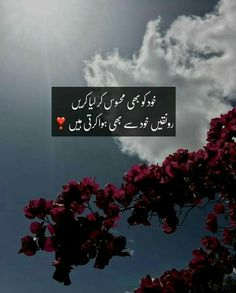 Urdu Quotes With Images, Love Quotes In Urdu, Urdu Love Words, Poetry Quotes In Urdu, Love Song Quotes, Urdu Poetry Romantic, Love Poetry Urdu, Islamic Love Quotes, Nice Poetry