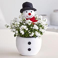 proflowers happy jolly snowman