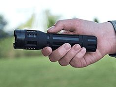 SABRE Stun Gun with Tactical Flashlight – Industry's Strongest Look Good Feel Good, One With Nature, Buyers Guide, Flashlight, Solar, Guns, Amazing, Top, February