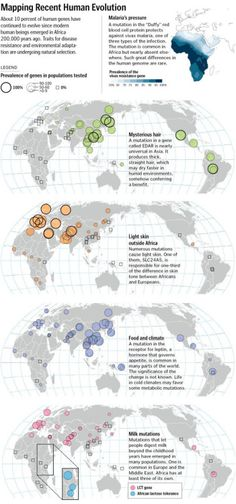 - Mapping Recent Human Evolution from the Washington Post