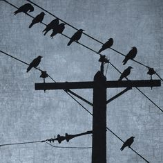 Crows Resting on Telegraph Wires on a Sky Blue Background with Antique Texture - Signed Fine Art Photograph by June Hunter, Nature Decor Group Of Crows, Industrial Artwork, Line Photography, Photoshop Photography, Urban Nature, Encaustic Painting, Aesthetic Images, Nature Decor, Blue Backgrounds