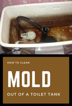 When it comes to cleaning, most of us simply ignore cleaning the toilet tank. And here pops the question: what's to clean in there? Well, I challenge you to remove the toilet tank lid and take a lo… Cleaning Toilet Tank, Cleaning Mold, Household Cleaning Tips, Cleaning Hacks, Green Cleaning, Spring Cleaning, Clean Baking Pans, How Do You Clean, Natural Cleaners