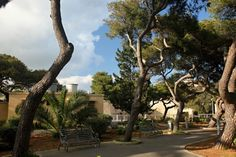 Park in Malta - free stock photo