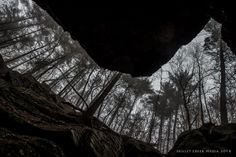 Looking Up - A Rainy Day at Parfrey's Glen State Natural Area - www.devilslakewisconsin.com