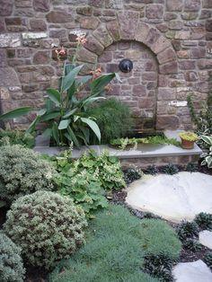 wall fountain with aquatic plants