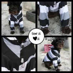 FREE sewing pattern for this long sleeve sports hoodie pullover shirt / sweater for any size dog! Upcycle / recycle your tshirt! 35 DIY Dog Coats