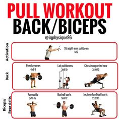 Back and biceps: the best workout combination workout plans Pull Day Workout, Push Workout, Biceps Workout, Back And Bicep Workout, Fit Board Workouts, Fun Workouts, Workout Board, Workout Plan For Women, Workout Plans