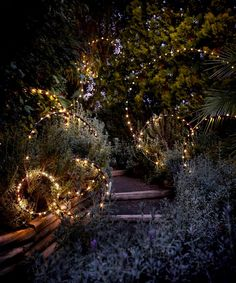 5 Fun Ways To Use Fairy Lights Outside – Outdoor Christmas Lights House Decorations Outdoor Tree Lighting, Outdoor Fairy Lights, Outdoor Trees, Backyard Lighting, Outdoor Gardens, Lighting For Gardens, Lights In Backyard, Garden Lighting Ideas, Outdoor Tree Decorations