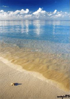 The perfect Tropical Beach CrystalWater Animated GIF for your conversation. Discover and Share the best GIFs on Tenor. Beautiful Photos Of Nature, Harbor View, Nature Gif, Tropical Beaches, Blue Beach, Hello Summer, Ocean Life, Beach Pictures, Ocean Waves