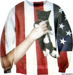 AMERICA! And kittens!