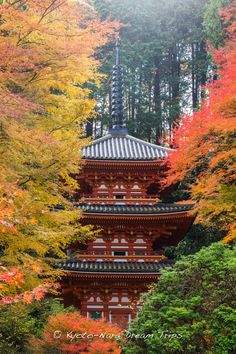 https://flic.kr/p/xvsXbB | Gansen-ji Temple, Autumn 2014, Kizugawa, Kyoto. | Waiting for autumn to come along! Three story Pagoda (三重塔) of Gansen-ji Temple (岩船寺), in rural Kizugawa County, Kyoto Prefecture. It is widely believed to have been erected in 835 by Emperor Ninmyō (仁明天皇, 27 September 808 – 6 May 850). The present pagoda dates back to 1442 and has been restored twice, once in 1682 and again in 1939.