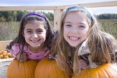 Take the family to an Adirondack Coast pumpkin patch!  www.goadirondack.com
