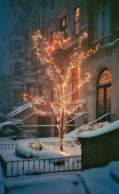 #winter #snow #nyc New York City..