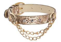 Designer Dog Collar Custom