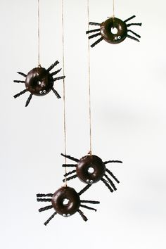 Spider Donuts // Sal