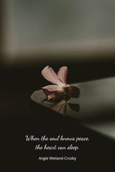 Humanity Quotes & Nature Peace Quotes for the Soul | 1000 Words Of Wisdom Quotes, Soul Quotes, Nature Quotes, Spiritual Quotes, Quotes Quotes, Life Quotes, Meaningful Quotes, Inspirational Quotes, Motivational Quotes