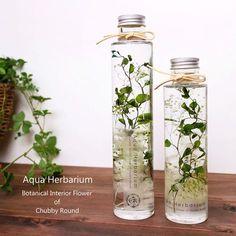 2本set【名入れラベル可能♡キラキラボトル】アクア・ハーバリウム~green plants~