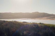 #carrapateira #oasis #portugal #algarve
