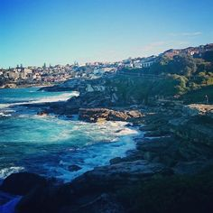 (Loc) Posted on May 31 2016 at 10:11AM by travelstories1: On the way from Bondi to Bronte  #hiking #coastalwalk #coast #nature #naturelovers #ocean #waves #pacific #bronte #bondi #coogee #coast #sydney #beaches #blog #travelblogger #seeaustralia #wanderlust #worldcaptures #travel #love #health #fitness #igers #instapassport #like4like