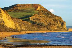 Golden Cap, the highest point on the South Coast, living up to its name in evening sunlight | Dorset | England