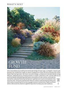 Growth Fund by Judy Kameon