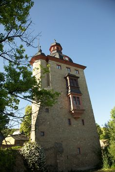 Schloss Vollrads, one of the world's oldest Wine Estates. 800 years old wine making tradition!