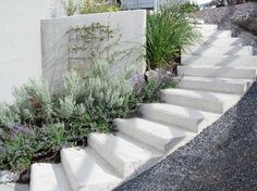 Nice stairs to the garden picture 1 Spanish Landscaping, Modern Landscaping, Backyard Landscaping, Sloped Backyard, Sloped Garden, Landscape Stairs, Garden Landscape Design, Outdoor Steps, Garden Stairs