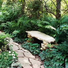 Garden bench for shade garden. Garden Stones, Garden Paths, Landscape Design, Garden Design, The Secret Garden, Woodland Garden, Garden Seating, Garden Benches, Garden Cottage