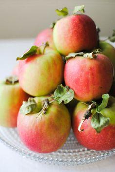 lovelylovelyfood: Pink Lady Apples