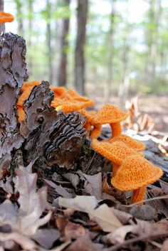 Knitted mushrooms blending in with the wild