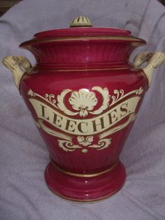 Original antique apothocary's leeches jar made in the Staffordshire potteries by Alcock. ca.1840 - Leeches were used for bloodletting in the 18th and 19th centuries by physicians. There's a fascinating article on the subject for those that may be interested at http://www.britannica.com/EBchecked/topic/750132/leeching