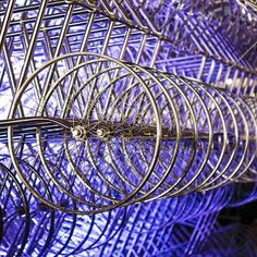 360 amazing: forever bicycles in Toronto