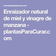 Enraizador natural de miel y vinagre de manzana - plantasParaCurar.com
