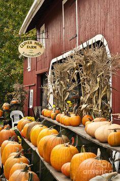 Farmhouse Touches — Autumn Farm Stand Photograph by John Greim Y'all.