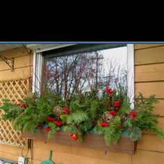christmas windowbox christmas window boxes winter window boxes christmas planters window box flowers