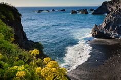 Europa- rolandgerth.ch Canario, Canary Islands, Maine, Water, Travel, Outdoor, Palmas, Europe, Scenery