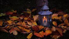 Autumn fire  -
