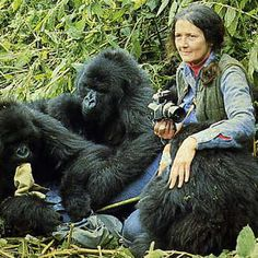 Dian Fossey (1932 - 1985). Zoóloga estadounidense reconocida por su labor científica y conservacionista con los gorilas de las montañas Virunga.