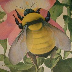 BEES Honeybees, Bumblebees and Beehives Vintage Paper Pack via Etsy.
