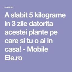 A slabit 5 kilograme in 3 zile datorita acestei plante pe care si tu o ai in casa! - Mobile Ele.ro Paramore, Holiday Parties, Good To Know, Health And Beauty, The Cure, Food And Drink, Lose Weight, Health Fitness, Homemade