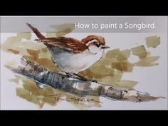 How to paint a bird, sparrow demonstration. A fun line and wash watercolor - YouTube