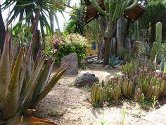 Desert Garden, Jardines San Gabriel de Barrera, Guanajuato, Mexico