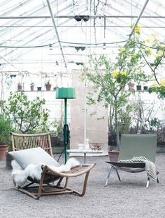 Greenhouse- I want one like this; big enough for a cute end table and 2 chairs.