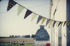 Green and brown pennants-Dory L Tuohey Photography