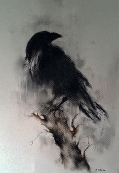 Original Raven Drawing Charcoal Black and White Art Halloween Gothic Crow on a…