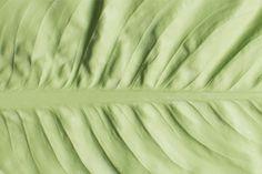 mischer'traxler reversed volumes leaves