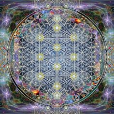 This is the Tree of Life in Sacred Geometry Visionary Artwork of Krystleyez